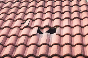 Roofing Contractor in Naples, FL